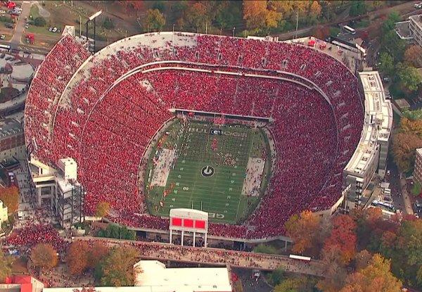 Auburn 2011 crowd